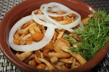 маринованные опята самый вкусный рецепт
