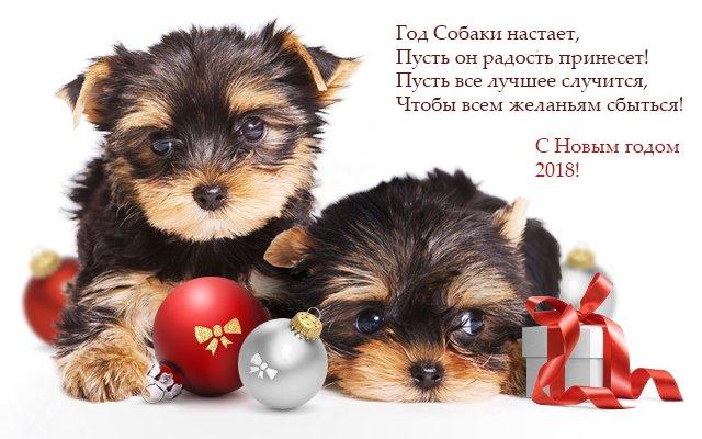 Картинки-поздравления с новым 2018 годом собаки