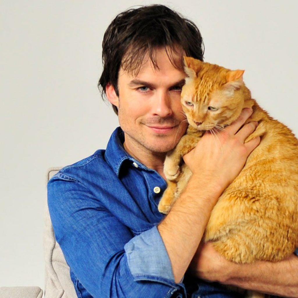Знаменитости, которые очень любят животных