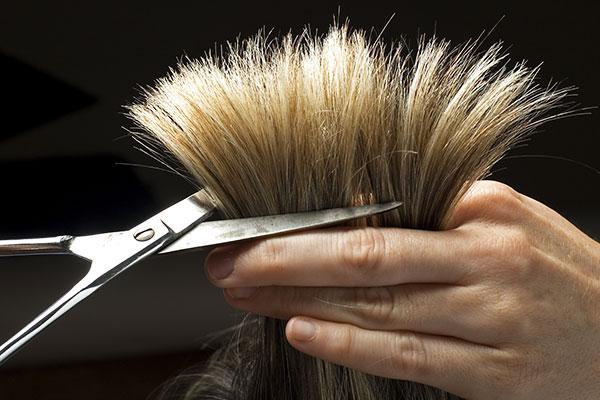 секутся волосы